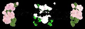 cm-promotions-logo.png