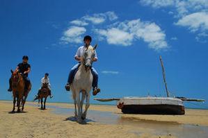 mozambique-horse-riding-safari.jpg