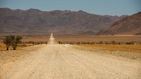 Desert Road - by Birger Strahl