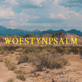 Woestynpsalm - Profile Photo