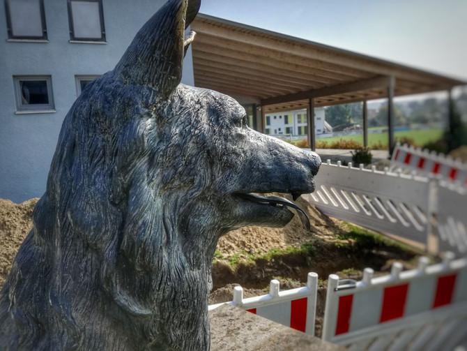 RENOVIERUNG TSV TERRASSE: Start ab dem 24. Juni 2019!