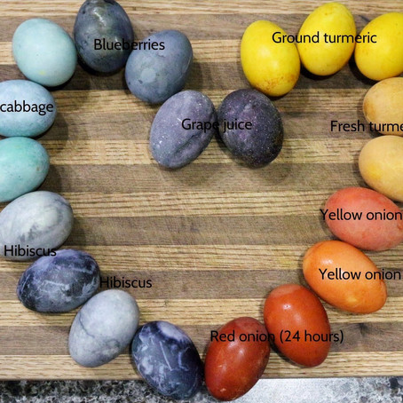 Dying farm fresh duck eggs with natural dyes