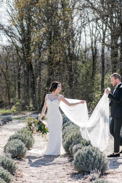 Elopment photographer - Norma PYP Photography -  Houston  Family Pet and Wedding Photograp