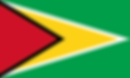 Guyana flag.png