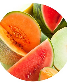 melonpasteque.png