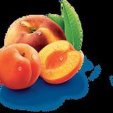 peche-abricot.png