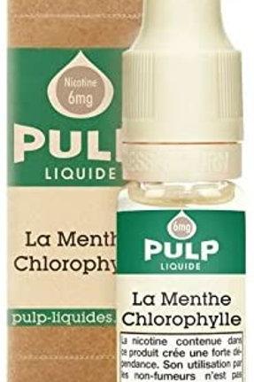 Menthe chlorophyle
