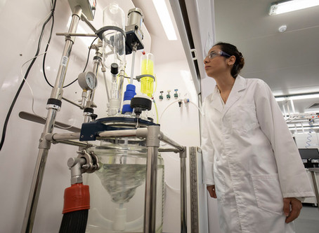 Meeting Clinical Challenges: Seaweed Bioinks