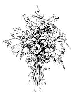bunch-flowers-bridal-bouquet-sketch-vect