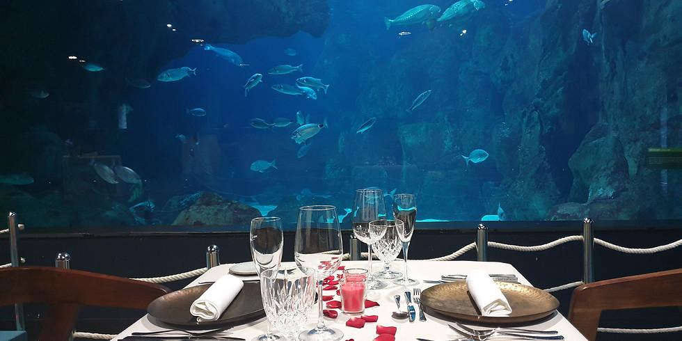 Cena bajo el mar   25 de abril
