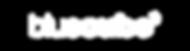 bluecube-logo-800 White-01.png
