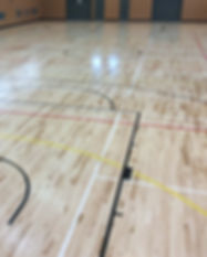 Action Timber Sports Floor Image- Tawa C