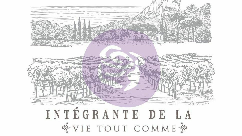 "'Boire Du Vin' Decor Transfer | Redesign With Prima | Large 27.5"" X 33.5"
