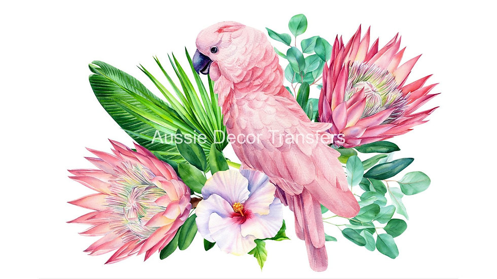 Pink Galah - Dry Rub Transfer - Click to see what's included!