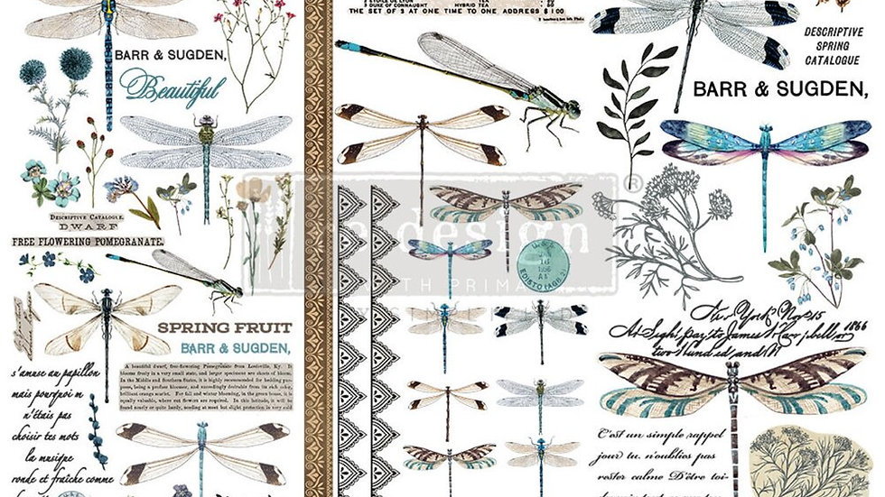 """'Spring Dragonfly' Small Transfer   Redesign With Prima   6"""" X 12"""""""