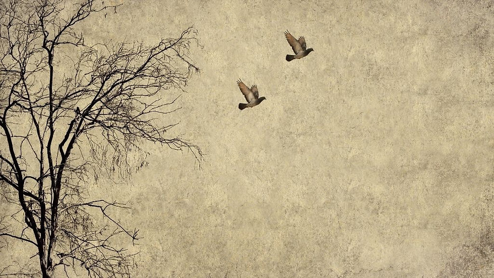 MINT by Michelle Decoupage Paper -Flying Birds