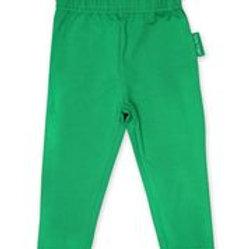 Organic Basic Leggings - Green