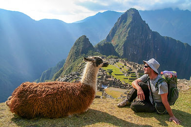 Original - Tourist and llama sitting in