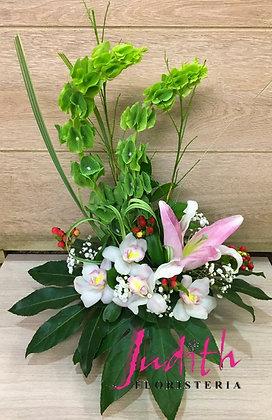 T67- Exótico con Orquídeas