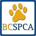 SPCA Square.jpg
