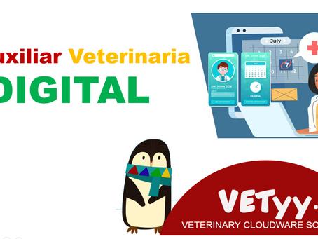 Las 12 funciones principales que  realiza un auxiliar de veterinaria frente a una auxiliar DIGITAL