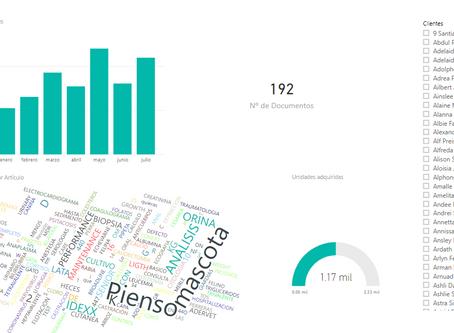 Crea tus propios informes y cuadros de mando interactivos tú mismo