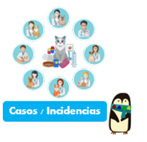 casos-referidos-incidencias-software-vet