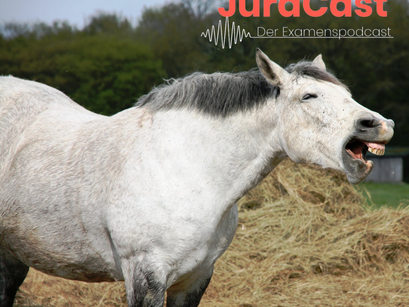 Folge 18: Alte Rippenfraktur beim Pferd - Sachmangel? (Zivilrecht | Jura-Podcast)