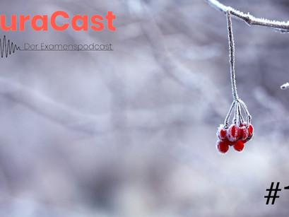 Folge 11: Aussetzung in der Kälte / Unterlassen (Strafrecht   Jura-Podcast)