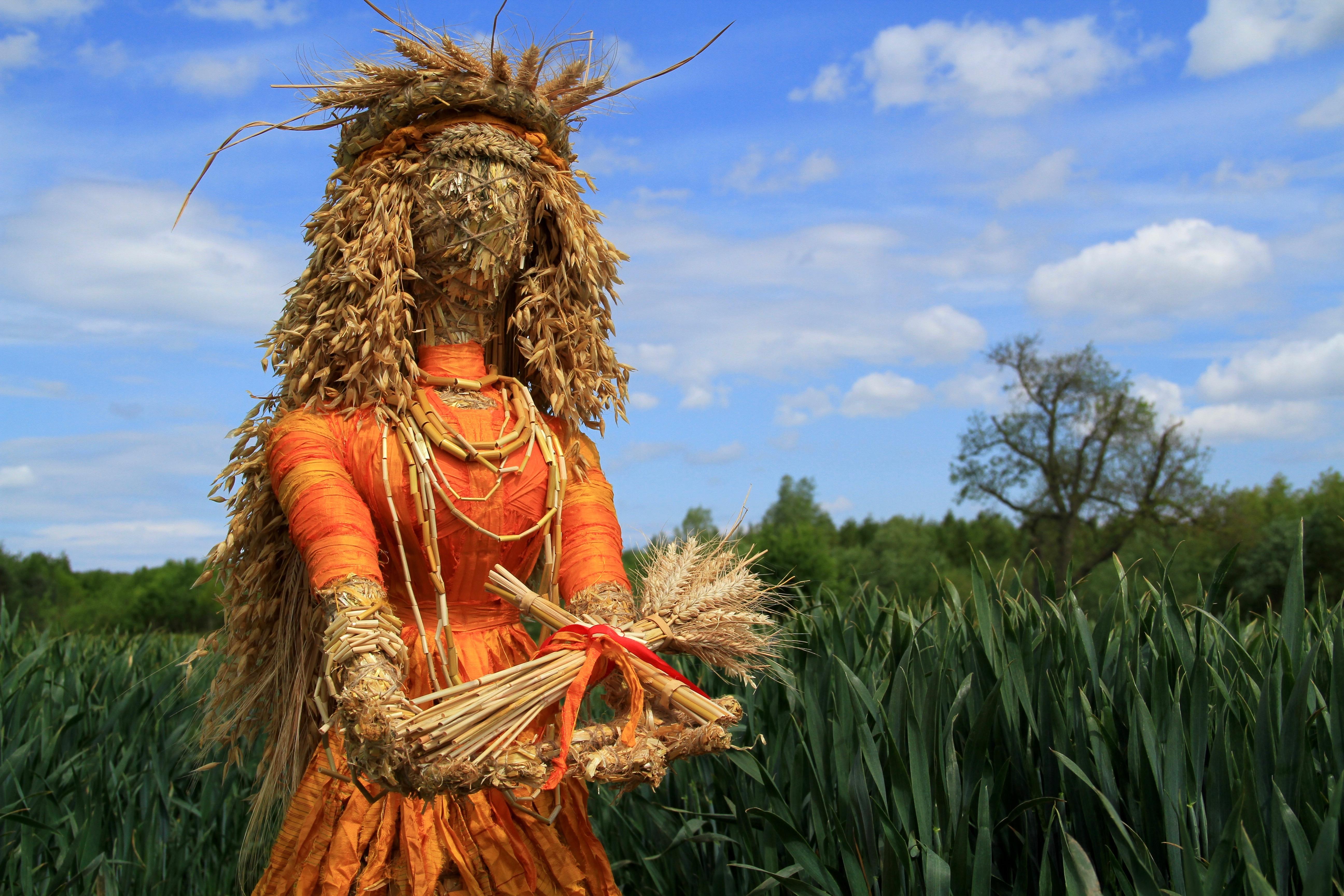 Grain Goddess 2019