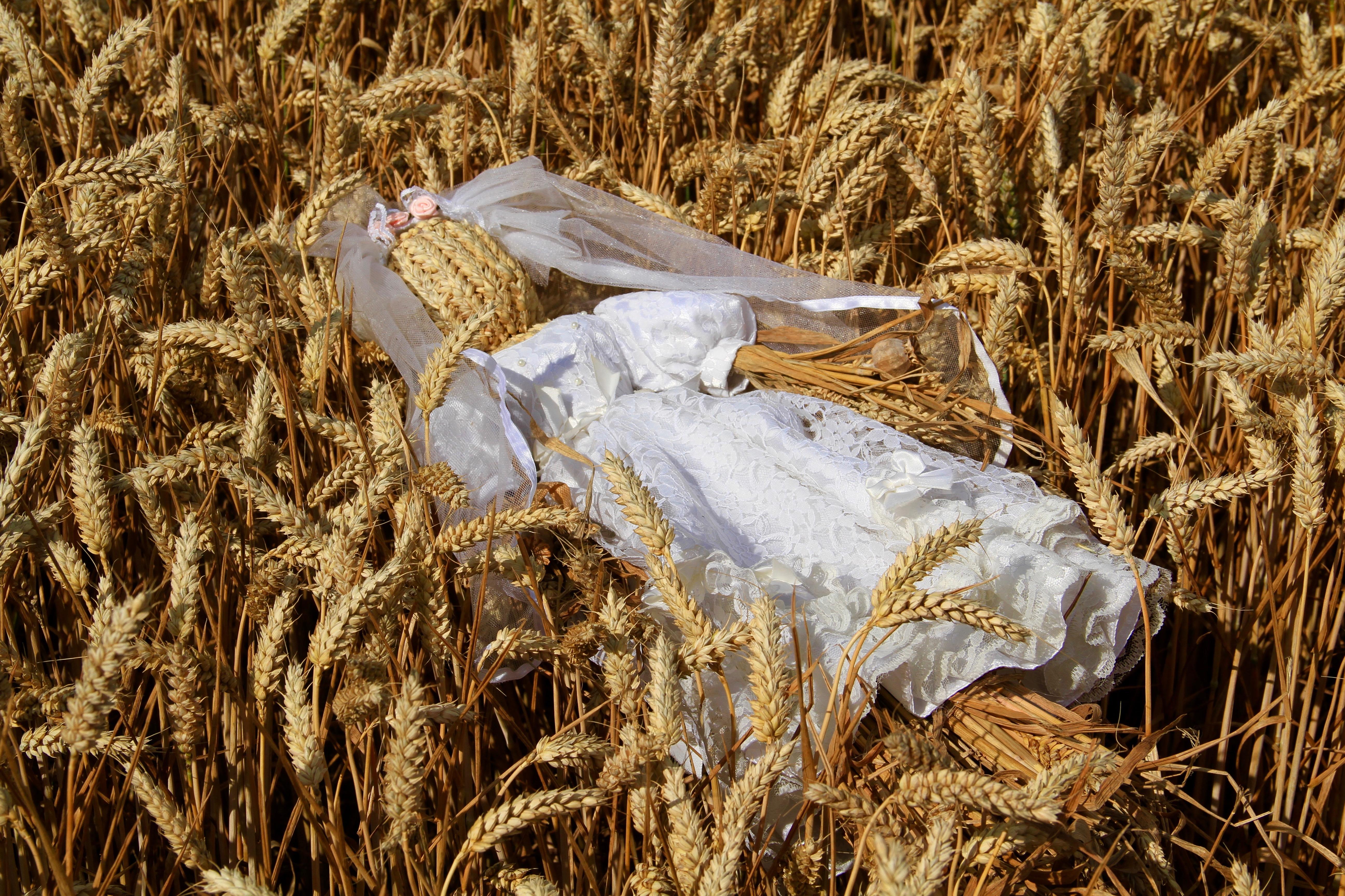 Harvest Bride