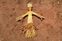 Wheat Queen