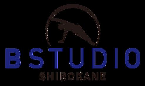 logo_800.png