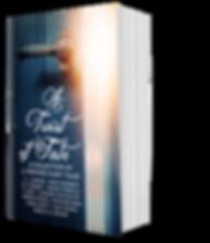 BookBrushImage-2019-4-17-13-022.png