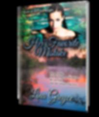 BookBrushImage-2019-4-17-12-2725.png