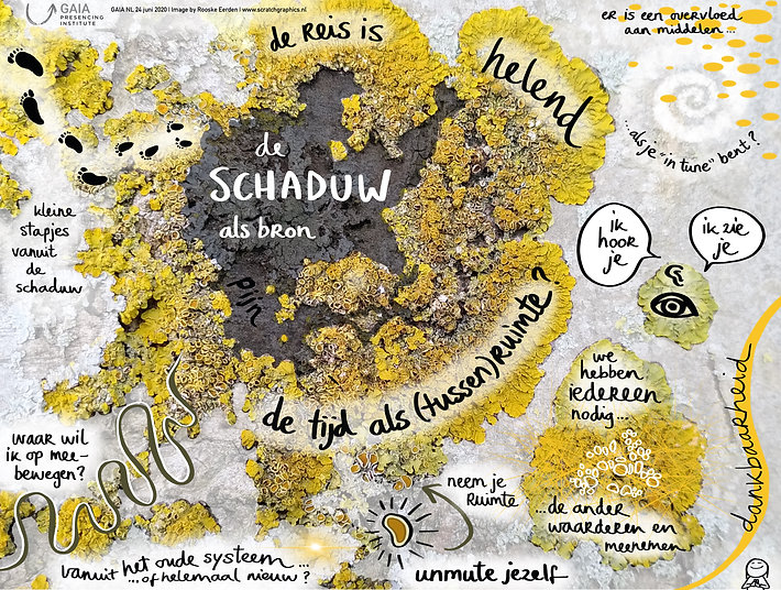 """live tekenaar"" Rooske Eerden Scratch Graphics remotegenerative scribing graphic recording online visual harvesting collective resonance"