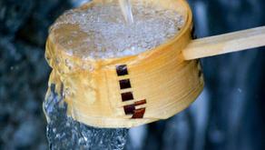 Enjoy some truly local Hokkaido sake.