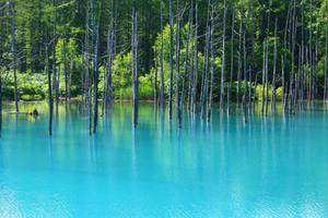 Apple Background - Famous 'Blue Pond'