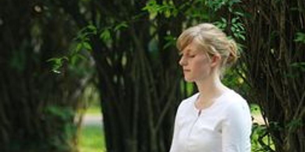 Meditation at Island Lake July 13