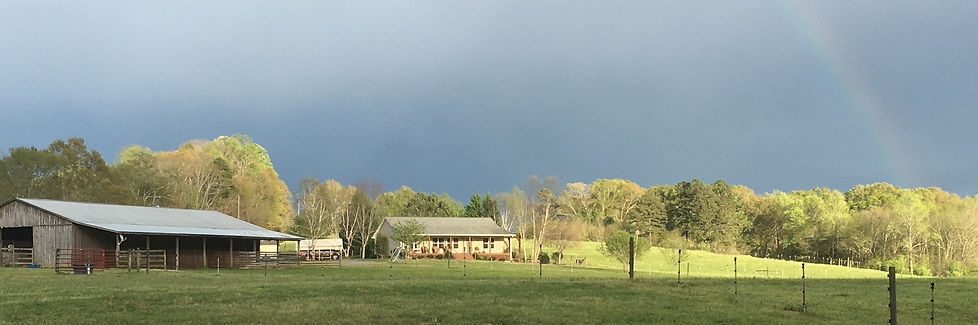 Homestead and barn view of DeltaWave Days Farm