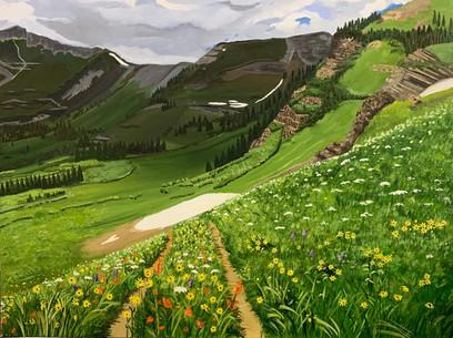 Colorado Summer