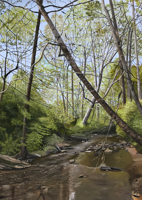 Carol's Creek