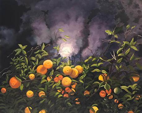 Citrus Moonlight