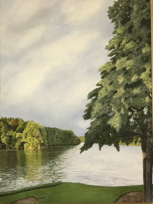 Lake Martin Oak Tree