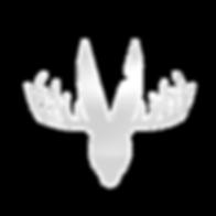 whitespace logo (2)_edited_edited_edited
