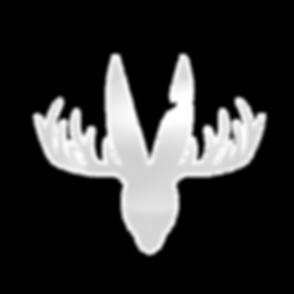 whitespace logo (2)_edited_edited_edited.png