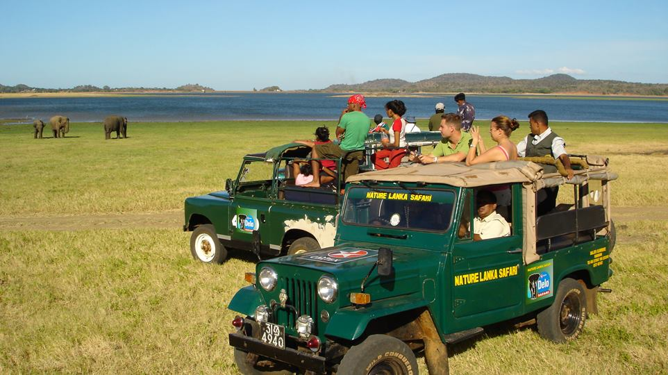 Yala National Park  (one day)