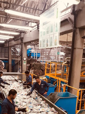 Learning about PET recycling in Colombia