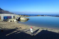 Buffels Bay Tidal Pool - Cape Point