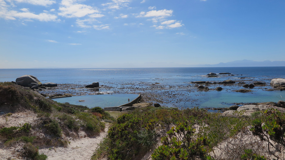 Article: City of Cape Town's new protocol for cleaning tidal pools